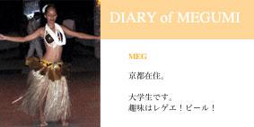 Diary Of Megumi