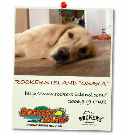Rockers Island Top Pict